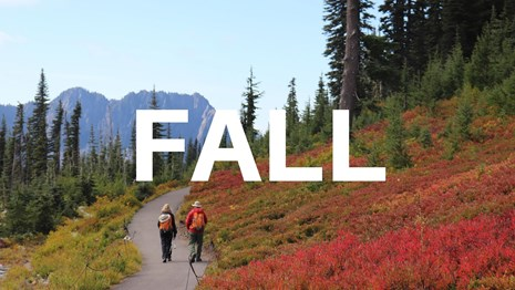 word Fall over background of two hikers walking on path