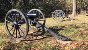 Cannons in a line pointing at a tree line