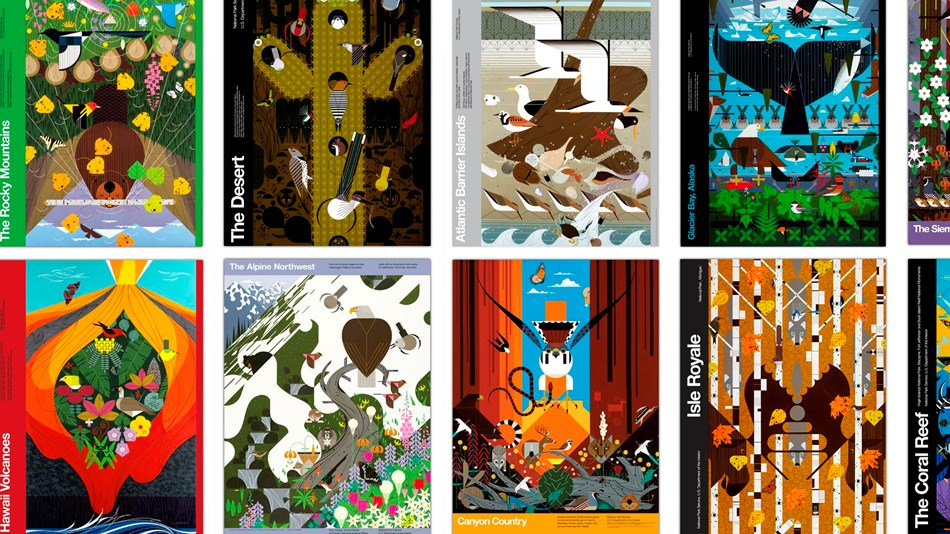 Collage of eight posters with colorful illustrations of plants and animals in national parks
