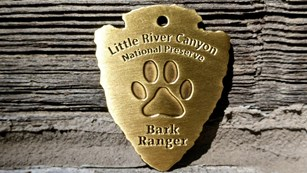 Earn Your Dog a BARK Ranger Dog Tag