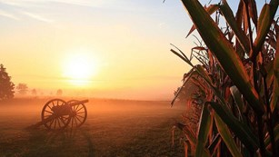 Sunrise over a cornfield with a cannon in the distance