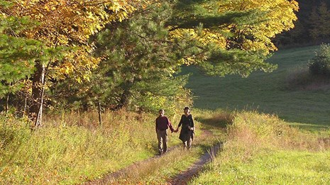 Fall Walkers near summer pasture