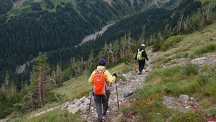 Two hikers decend a trail into a forested river valley.