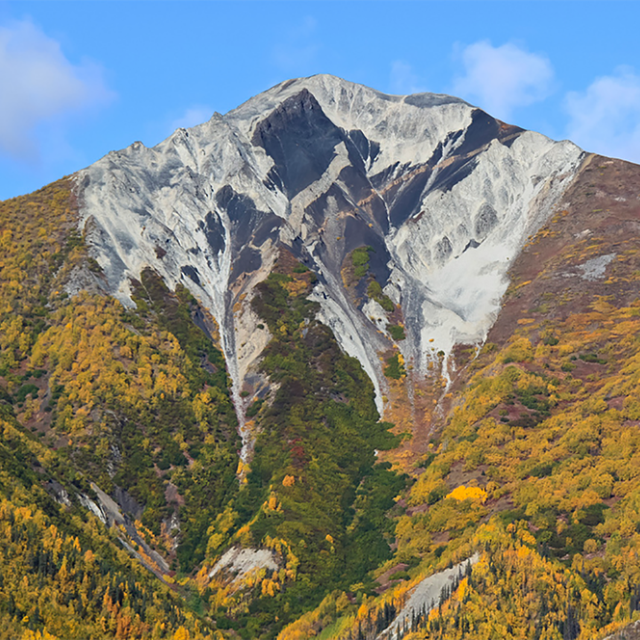 fall colors cover a mountain side
