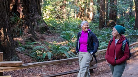 Two women enjoy a walk along a Muir Woods hiking trail