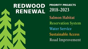 Green image with light green trees and list of words describing Redwood Renewal Begins projects