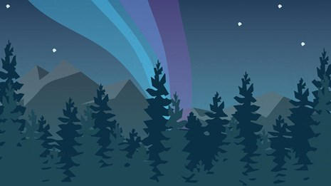 Illustration of the northern lights over a forest at night with text reading