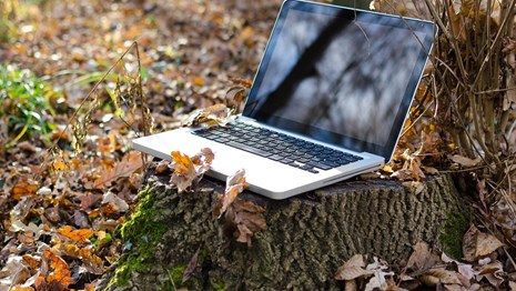 computer on a stump in the woods with brown leaves