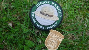 Junior Ranger Badge next to Junior Ranger Patch in grass