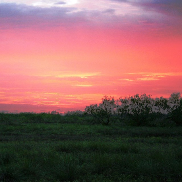 The sun sets behind a pink sky over the chaparral.