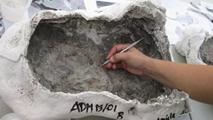 A scientist prepares a fossil in a plaster jacket.