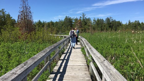 People enjoying a stroll on the Marsh Trail boardwalk.