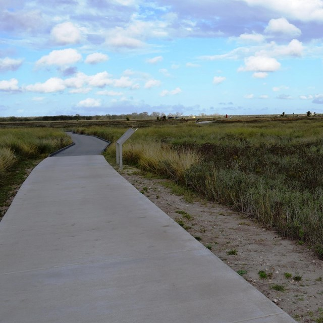 Paved trail leading into grassy prairie