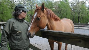An image of Ranger Maggie being nuzzled by a large horse at the Horse Center.