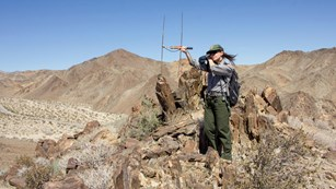 Park ranger using radio equipment to track animals