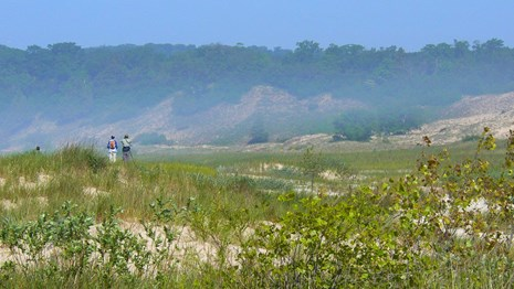 Two hikers on the shrub-covered dunes of NMI