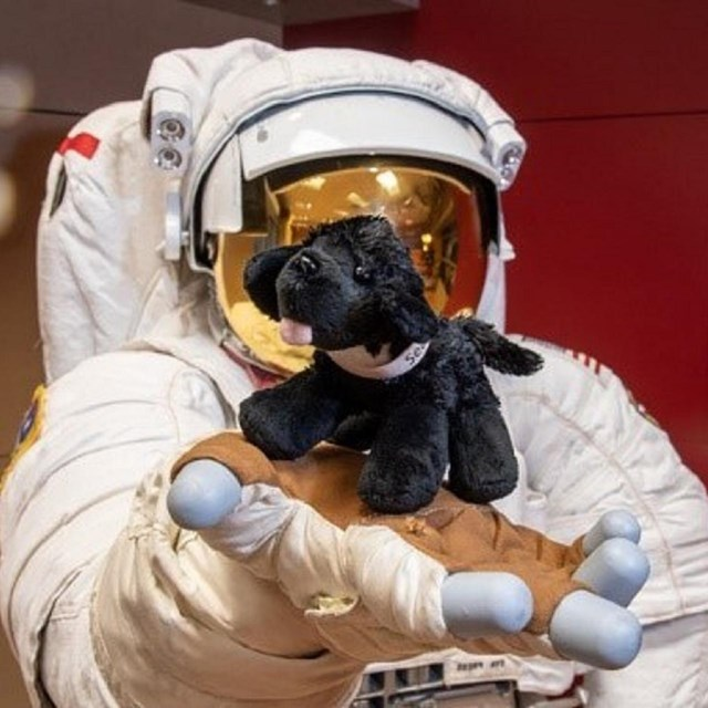 Astronaut holding a plush black dog