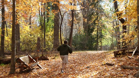 Jogger on trail covered in fall leaves passing a park bench.