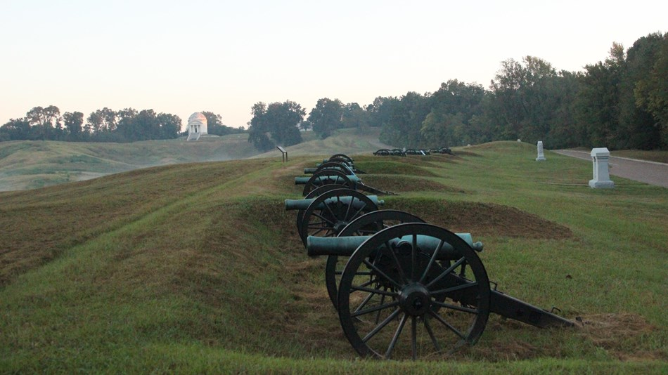 Row of Cannons in front of the Illinois Memorial in light fog