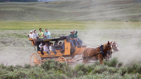 People on a stagecoach ride near the Roosevelt Lodge