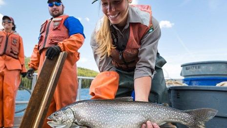 A fish biologist holds a large lake trout in her hands.