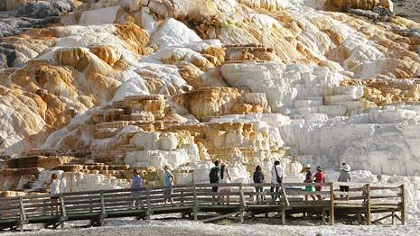 Visitors on a boardwalk gaze out at orange and white colored travertine terraces.