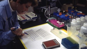 Researcher working with a pipette in the lab.