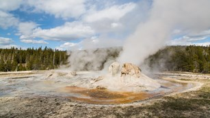 Photo of Grotto Geyser in the Upper Geyser Basin