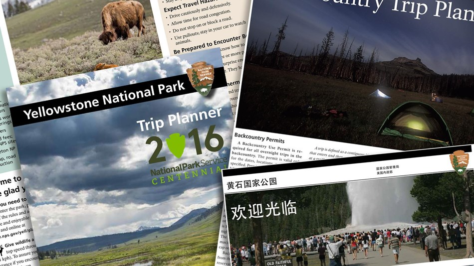 Photo of park brochures