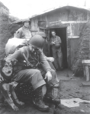 Soldier pets large dog as other soldiers look on.