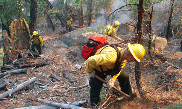 Firefighters use hand tools to scrape away vegetation and reach mineral soil to build a fireline.