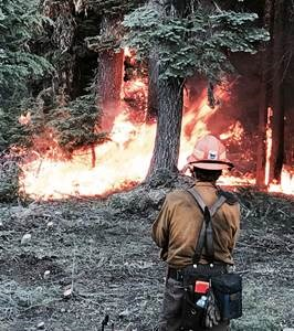 Firefighter monitoring an active fire in the forest
