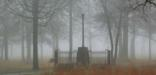 The 1856 Washington Light Infantry Monument in fog in 2009.