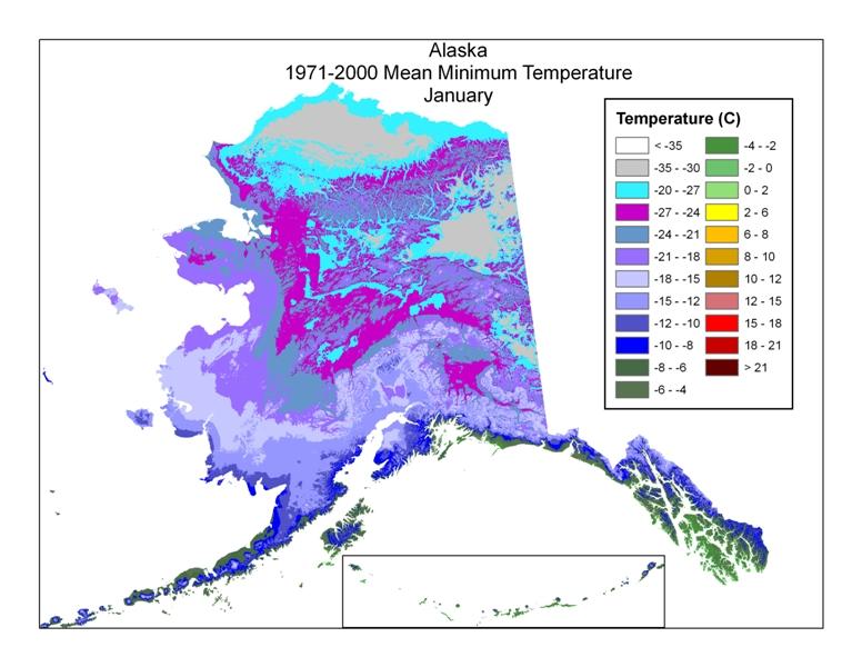 Alpine Tundra In Alaska