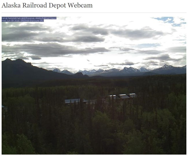 Screenshot from depot web cam, showing nearby forest and distant mountains
