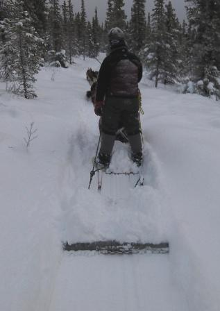 Dragging trail groomer behind sled