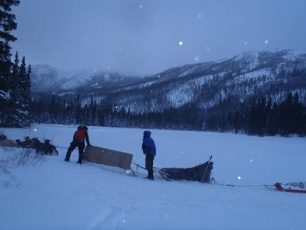 dogs pulling trail crew knack box out on lake