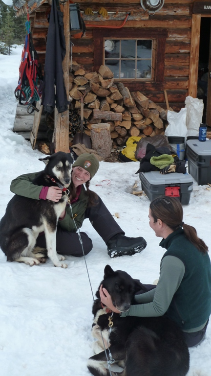 Rangers petting dogs at Windy Cabin