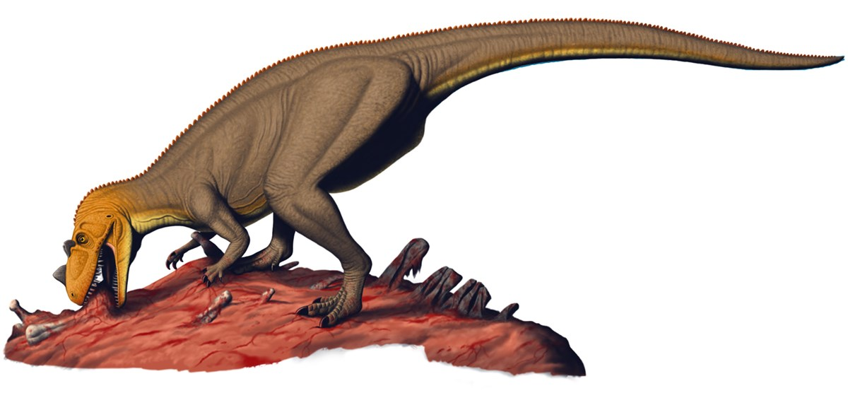 Artwork depicting a Ceratosaurus dinosaur