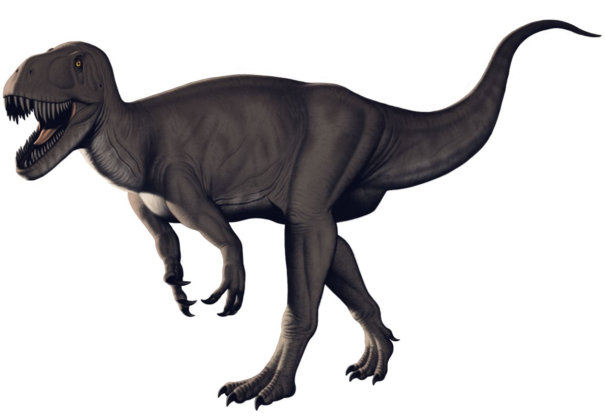Artwork depicting a Torvosaurus dinosaur
