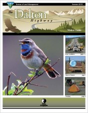 A small image of the Dalton Highway Visitor Guide