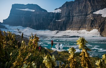 Grinnell Glacier and Upper Grinnell Lake behind wildflowers.