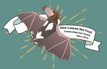 "drawing of spotted bat with banner ""Bat Fest"""