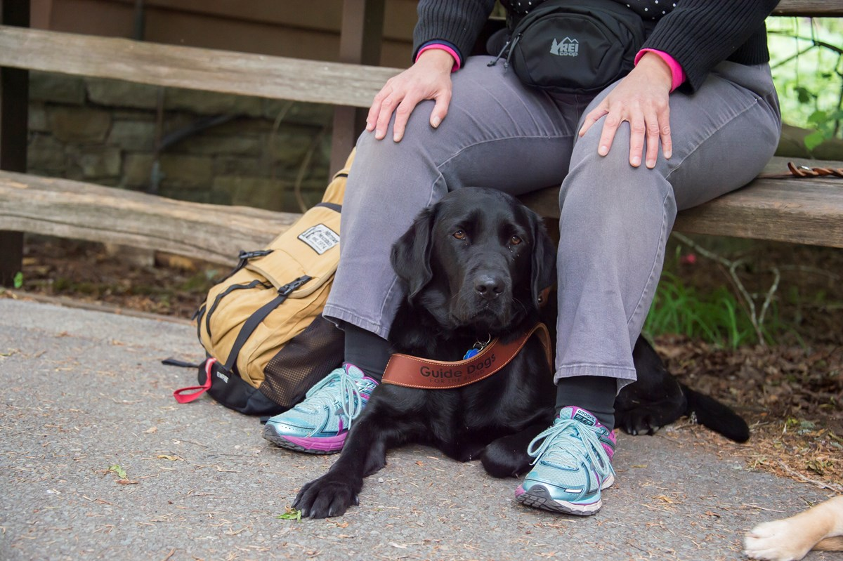 A black dog lies on the ground between the legs of a person sitting on a bench.