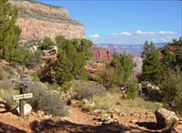 Pinyon pine and juniper zone