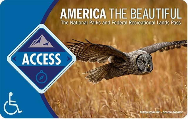 "America the Beautiful Access Pass depicts an owl flying over a field of grain, the word ""access"" is in a blue diamond on the left."