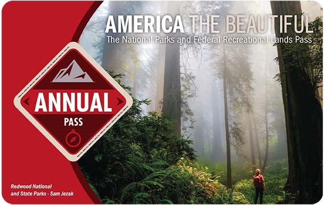 "America the Beautiful 2021 Annual Pass shows a hiker silhouetted by a towering misty forest, the word ""annual"" is in a red diamond on the left."