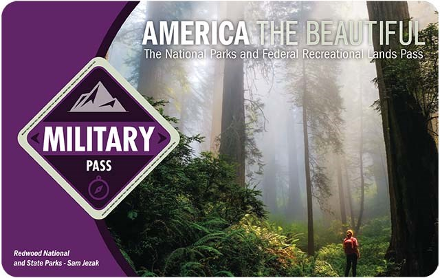 "America the Beautiful 2021 Annual Military Pass shows a hiker silhouetted by a towering misty forest, the word ""military"" is in a purple diamond on the left."