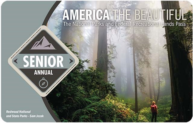 "America the Beautiful 2021 Senior Annual Pass shows a hiker silhouetted by a towering misty forest, the words ""senior annual"" are in a dark grey diamond on the left."