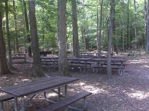 a picture of the Laurel Picnic Area